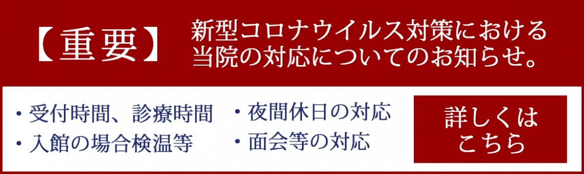 Ichinomiya_slideshow_corona